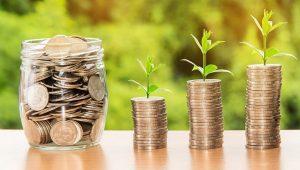 Geldmünzen aus denen Pflanzen sprießen